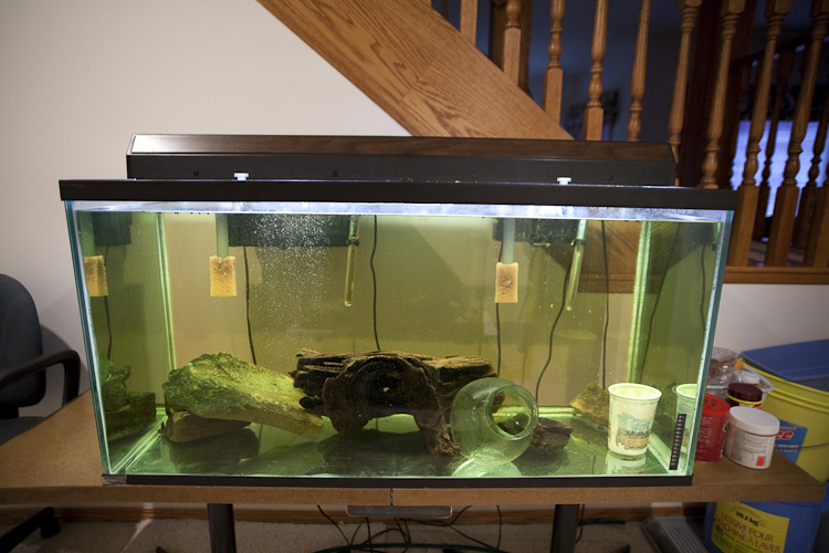 Fs calgary 90 gallon aquarium hood lights stand for 90 gallon fish tank stand